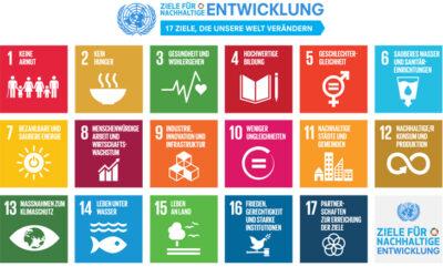 Die Ziele für nachhaltige Entwicklung und welche Rolle du dabei spielst